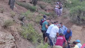 Orman işçisi, kestiği ağacın altında kalarak öldü