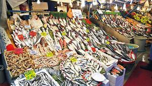 Balık sezonu açıldı... Haydi, rastgele