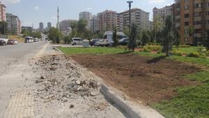 Çimde büfe betonu kalktı