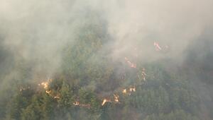 Hatayda orman yangını Bir köy daha boşaltıldı