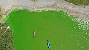 Alg patlaması, Uluabat Gölünü yeşile boyadı