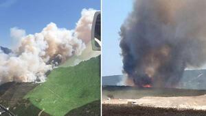 Son dakika... Adana Pozantı ve Çanakkale Geliboluda orman yangını
