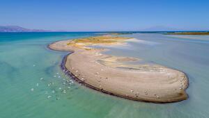 Küresel iklim değişikliği nedeniyle Van Gölünün su seviyesi düşüyor