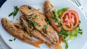 Tekir nasıl bir balıktır Tekir balığı nasıl pişirilir