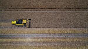 Tarım ÜFE ağustosta arttı