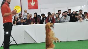 Antalyada evcil hayvan ürünleri fuarı açılıyor