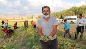 Mevsimlik işçiler alacaklarının ödenmesini istedi
