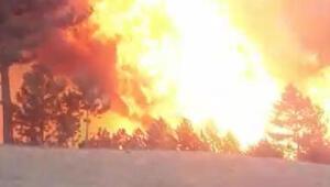 Son dakika... Çorumda orman yangını