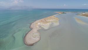 Van Gölü için kritik uyarı: Büyük tehlike altında