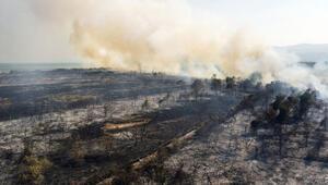 Kızılırmak Deltası Kuş Cennetinde yangın