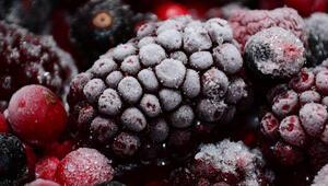 Dondurulmuş gıdaları güvenle yiyelim mi