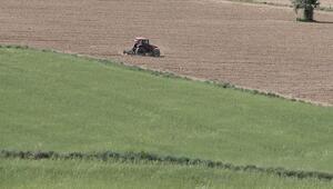Hazineye ait tarım arazileri çiftlere kiralanacak.. İşte projenin detayları