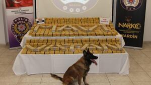 Narkotik köpeği Nilly, 420 kilo eroin buldu