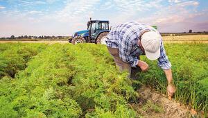 Hazine arazisinde çiftçilik dönemi
