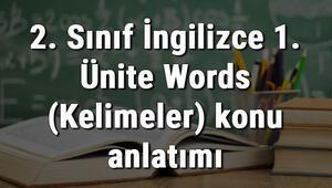 2. Sınıf İngilizce 1. Ünite Words (Kelimeler) konu anlatımı