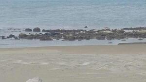 Arsuz Plajı Nerede Ve Nasıl Gidilir Arsuz Plajı Özellikleri, Kamp İle Konaklama Detayları Ve Giriş Ücreti (2020)