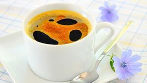 Hindiba Kahvesi Nedir, Faydaları Nelerdir