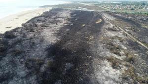 Kızılırmak Deltasındaki yangın, UNESCO sürecini etkilemeyecek