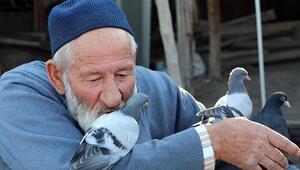 Güvercin besleyen Halil Dede, örnek oluyor