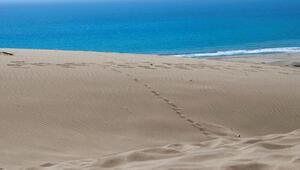 Patara Plajı Nerede Ve Nasıl Gidilir Patara Plajı Özellikleri, Kamp İle Konaklama Detayları Ve Giriş Ücreti (2020)
