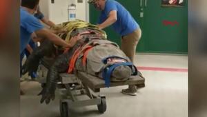 300 kilo ve 3,5 metre uzunluğunda... Görüntüleri rekor kırdı