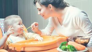 Aile.gov.tr süt parası başvuru işlemi nasıl yapılır