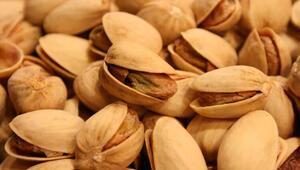 Çocuklarınıza bol bol yedirin… İşte zihin açan 10 besin