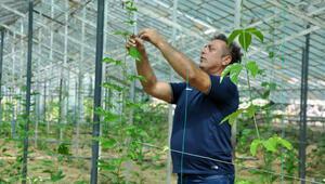 Stuttgartlı gurbetçi, Alanya'da passiflora bahçesi kurdu