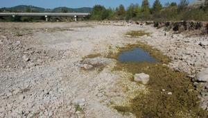Kuraklık nedeniyle barajda su seviyesi düştü, ırmak kurudu