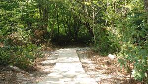 Gürcüoluk Mağarası Tabiat Parkına yürüyüş yolu ve piknik alanı