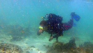 Van Gölü'nün derinliklerindeki kalıntılar gün yüzüne çıkartılıyor
