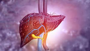 Karaciğer yağlanması hafife alınmamalı Mutlaka tedavi edilmeli