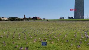 ABDde koronavirüsten ölenlerin anısına 20 bin Amerikan bayrağı dikildi