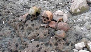 Çanakkale'de korkutan görüntü Gölet havzasında bulundu...