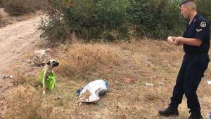 Vahşetin böylesi... Çanakkale'de tepki çeken olay