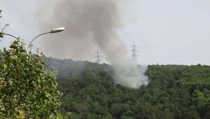 Son dakika haberler... Aydosta orman yangını