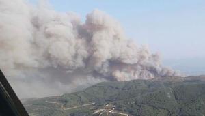 Son dakika haberi: Söke'de ziraat alanındaki yangın ormana sıçradı