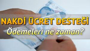 Nakdi Ücret Desteği ne zaman ödenecek İŞKUR Nakdi Ücret Desteği (Ücretsiz izin desteği) sorgulama