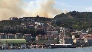 Son dakika... Bursada orman yangını