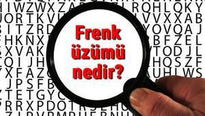 Frenk üzümü nedir Frenk üzümü nerede ve nasıl yetişir Frenk üzümü faydaları