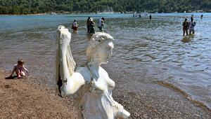 Bu kadarı da pes dedirtti Kızkumunun Prenses heykeli şimdi de küllük olarak kullanılıyor