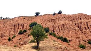 Erozyonla ortaya çıkan Şeytan Şehri Kayalıkları, hayran bırakıyor