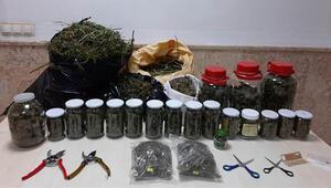 Sakaryada jandarmadan uyuşturucu operasyonu; 10 kilo esrar bulundu