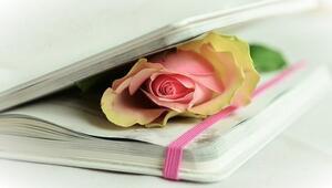 En iyi şiirler listesi - Sevgilinize okuyabileceğiniz en iyi 10 şiir