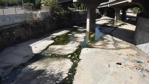 İzmirde kötü koku isyanı