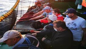Çanakkale Valisi İlhami Aktaş balıkçılarla birlikte ağ çekti