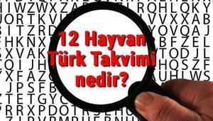 12 Hayvan Türk Takvimi nedir 12 Hayvan Türk Takvimi hayvanları neler ve yıllara göre özellikleri