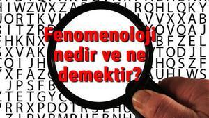 Fenomenoloji (Görüngübilim) nedir ve ne demektir Felsefede Fenomenoloji temsilcileri kimlerdir