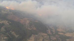 Manisadaki orman yangını kontrol altına alındı