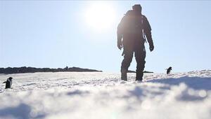 Bakan Varank: Antarktikada kalıcı üs kuruyoruz